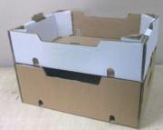 Ящик под овощи , фрукту и ягоду от производителя